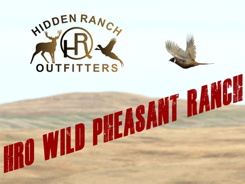 Welcome to HRO Wild Pheasant Ranch!