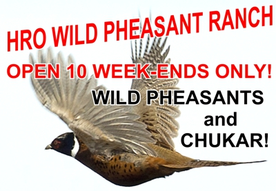 HRO Upland Game Bird Preserve